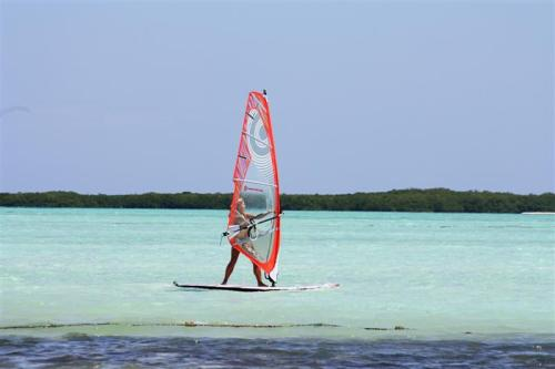 Windsurf2_medium