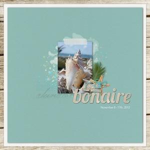 Bonaire2012_cover